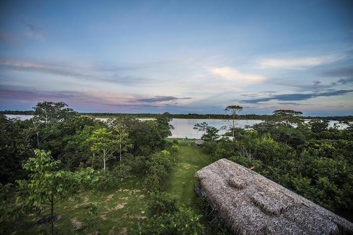 Iquitos Peru Amazon Forest